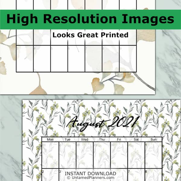 Ginkgo printable monthly calendar contains high resolution images for beautiful printing quality.